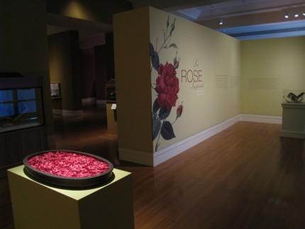 Entrance to exhibit